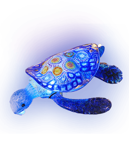 Honu White Background